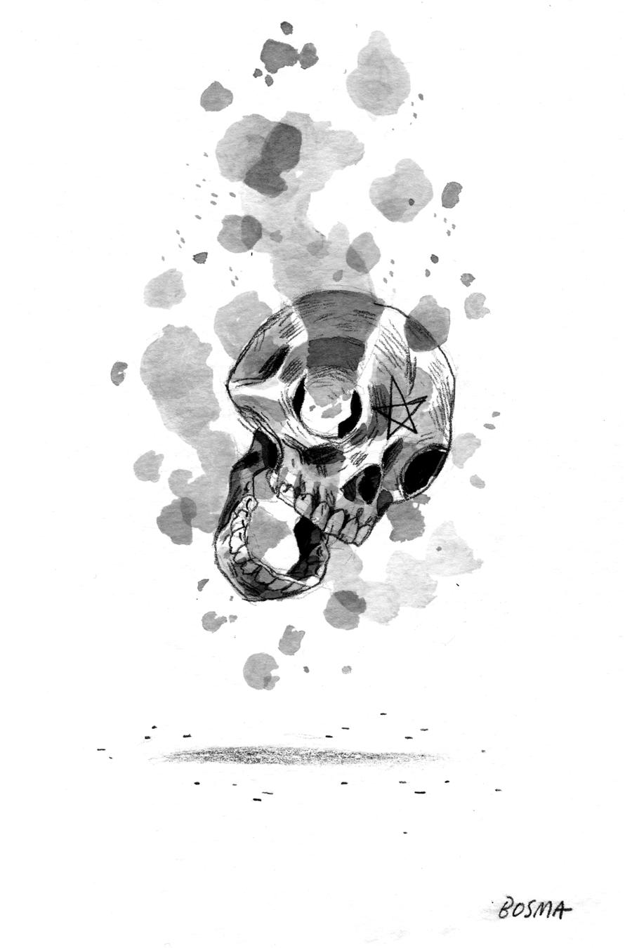 bosma_skull