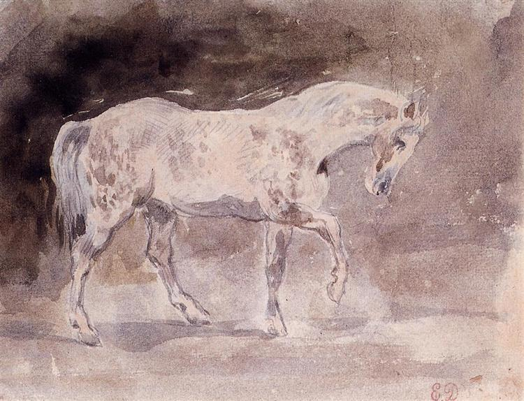 horse(1).jpg!Large